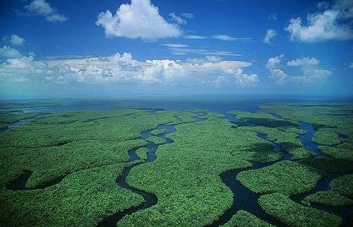 Aerial photo of Everglades National Park, Monroe County, Florida, FL  United States