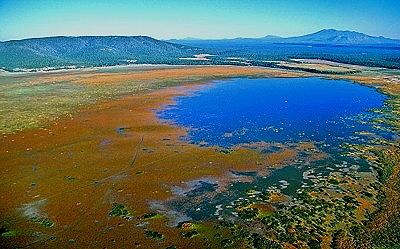Mormon Lake Az >> Airphoto Aerial Picture Of Mormon Lake Coconino County Arizona