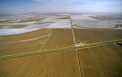 Airphoto Aerial Photograph Of Cotton Fields Lubbock